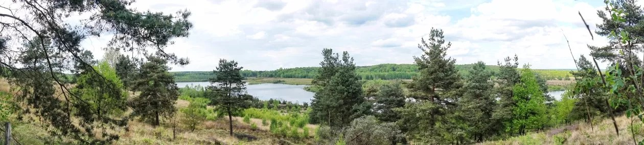 Maasmechelen Mechelse Heide