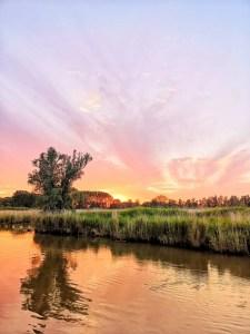 biesbosch zonsondergang