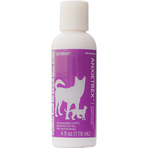 Homeopathic Remedy for Dog Anxiety