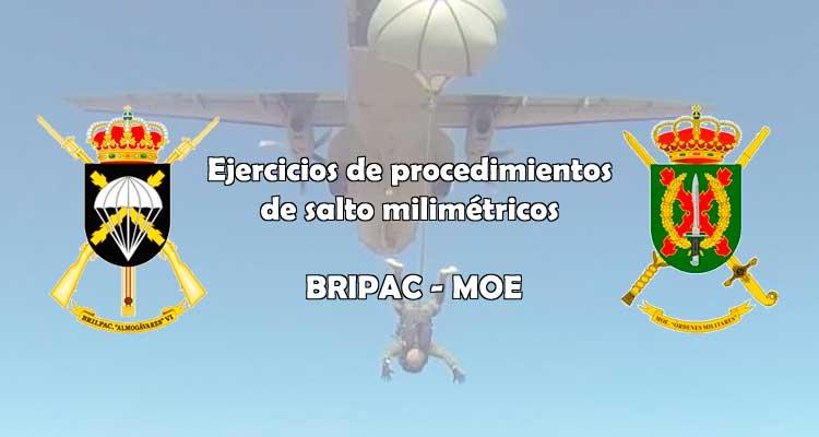 Procedimientos milimétricos Bripac-Moe. VetPac