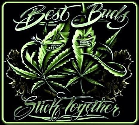 Best Buds Stick Together