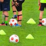 Der VfB sucht Nachwuchs