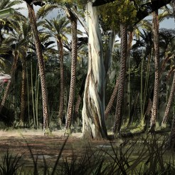 122_Ext_MalasaursCompound_130422_TreeUp_RS