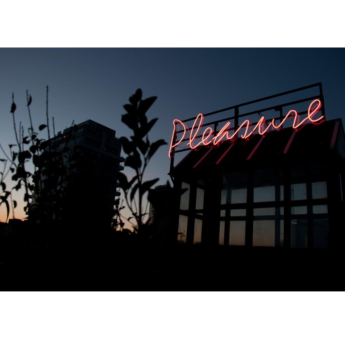 Pleasure 1