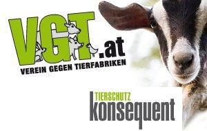 Banner | VGT-Logo | Spendengütesiegel