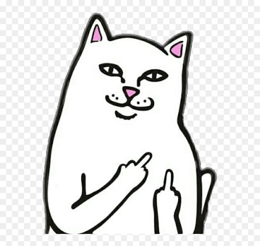 Transparent Black And White Cat Png Fuck You Cat Meme Png
