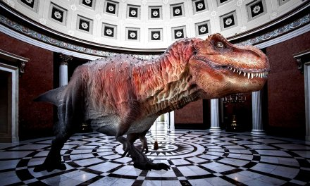"DINOSAURS ""RESURRECTED"" AT MAYBORN MUSEUM USING AUGMENTED REALITY TECHNOLOGY"