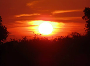 O sol se pondo no Pantanal Mato grossense