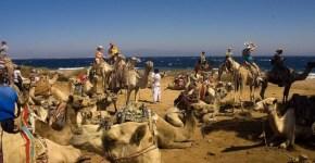 Le escursioni da fare a Sharm, ecco i consigli
