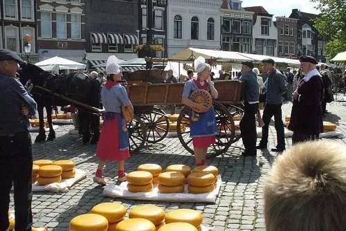 Formaggio Gouda in Olanda, dove trovare la tipicità