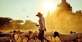 National Geographic ti fa vincere la Tunisia con Indiana Jones, contest