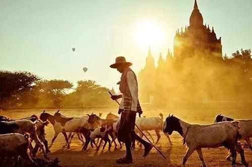National Geographic ti fa vincere la Tunisia con Indiana Jones, contest