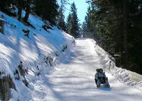 La pista per slittini più lunga d'Italia, in Alto Adige sul Monte Cavallo