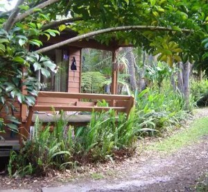 Melaleuca Surfside Backpackers, la Natura a Port Stephens