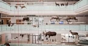 MUSE il nuovo Museo delle Scienze a Trento