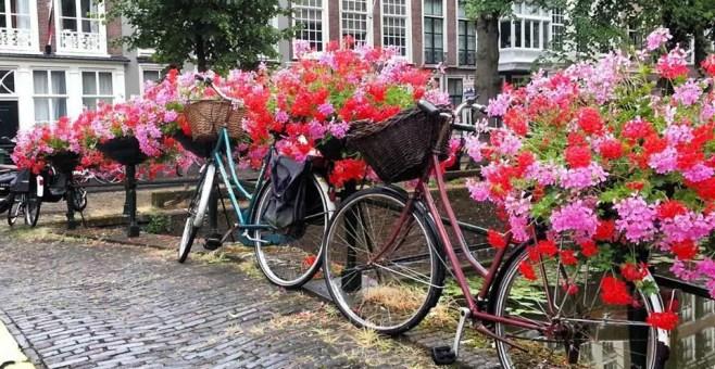 Den Haag, un weekend a l'Aja