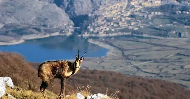 Parco Nazionale d'Abruzzo, una gita a Barrea
