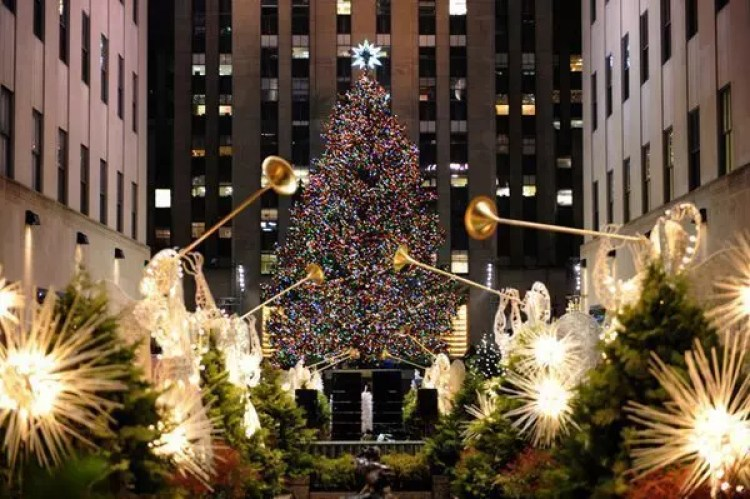 The Rockefeller Center Christmas Tree - New York, NY