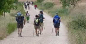 Via Francigena: conoscere la Toscana in cammino