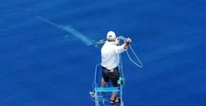Messina, pescaturismo e la cattura del Pesce Spada