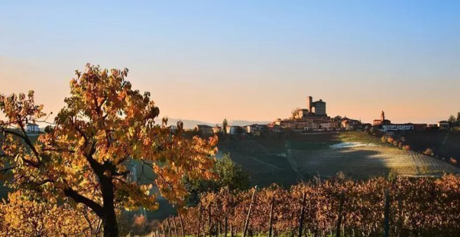 Langhe: mangiare e bere low cost