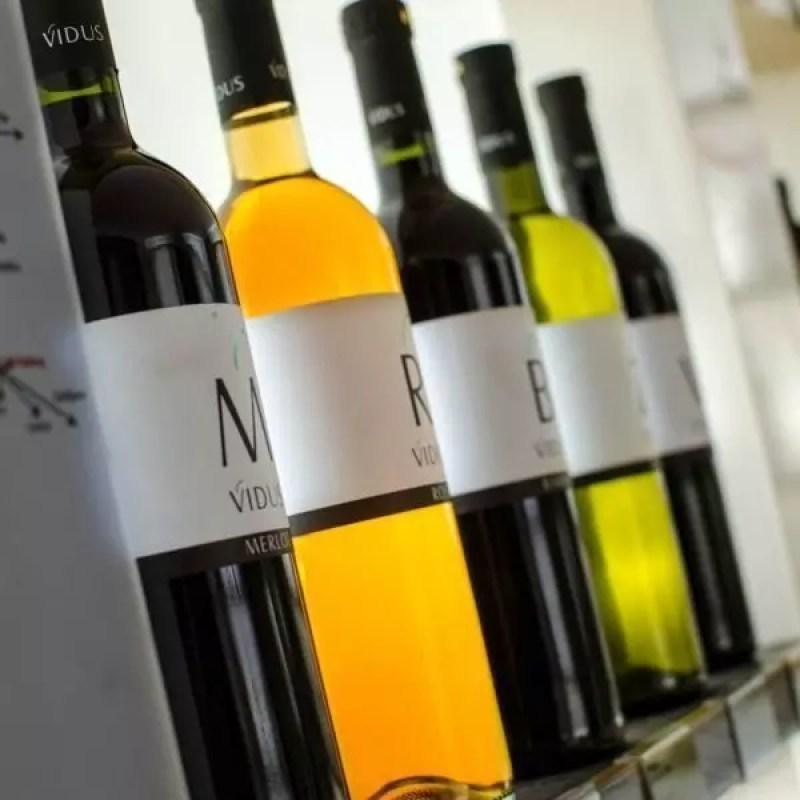 slovenia-vino