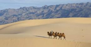 Mongolia, tour nel deserto del Gobi solo per avventurieri