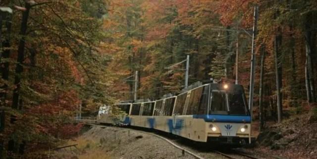 5 posti in cui godersi il foliage in Piemonte