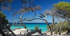 Ajaccio, in Corsica le spiagge più belle