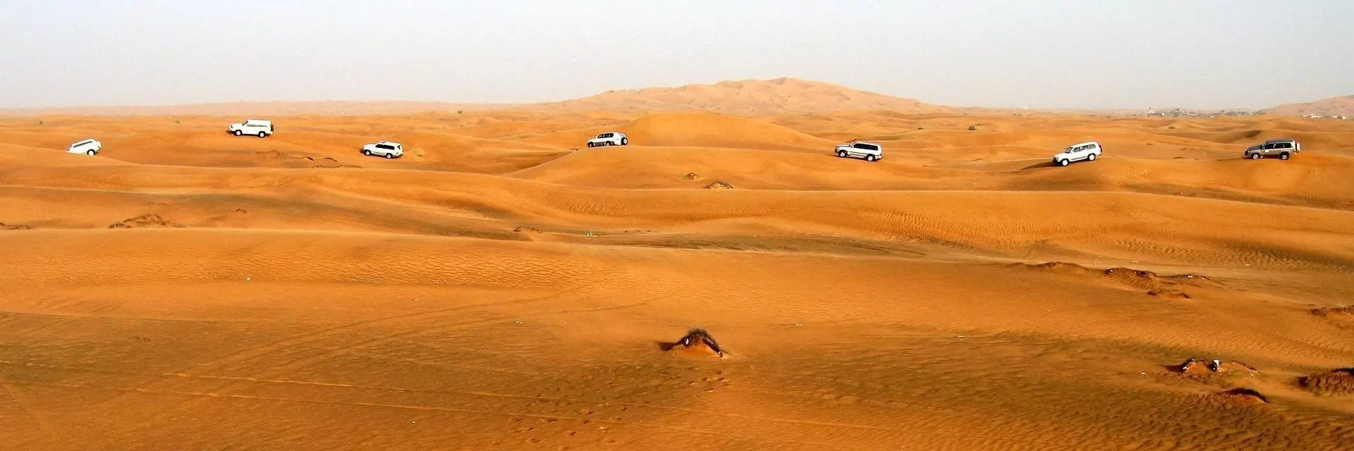 Safari Dubai