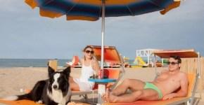 Senigallia: spiagge e parchi per cani
