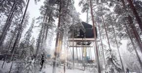 Le 7 migliori case sugli alberi nel mondo