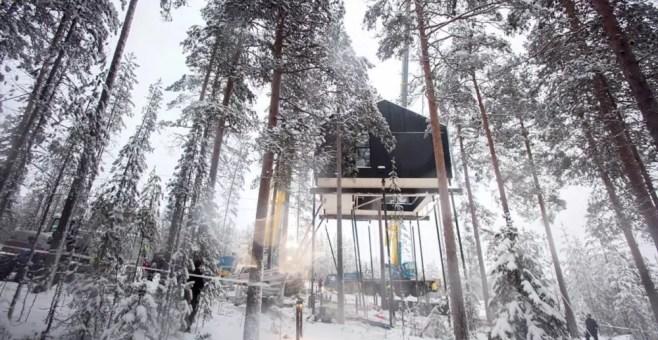 Case sugli alberi nel mondo: le 7 migliori