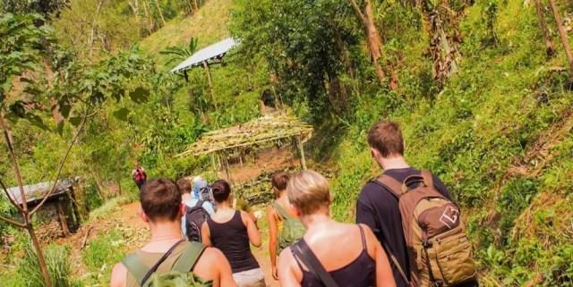 Trekking nella Giungla di Chiang Mai