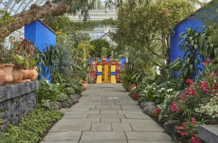 giardino museo Frida Kalho
