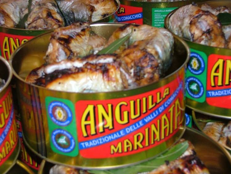 anguilla marinata tradizionale delle valli di Comacchio alla Manifattura dei Marinati