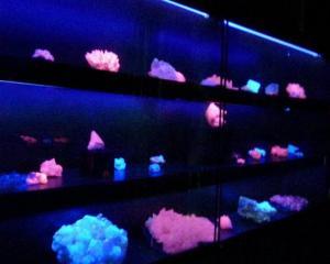 bacheca minerali fluorescenti museo de minerales andrés del castillo