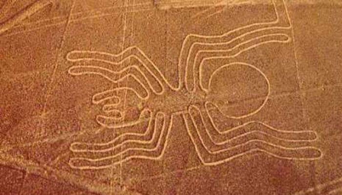 il ragno figura delle Linee di Nazca