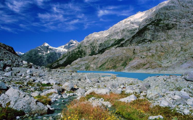 un ruscello all'interno del parco nazionale pumalín