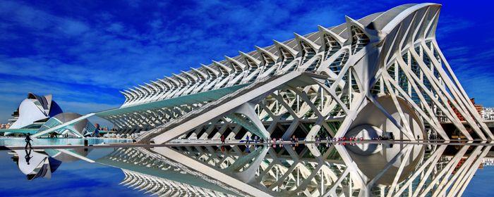 architettura del museo de las ciencias nella cttà delle arti e delle scienze di calatrava