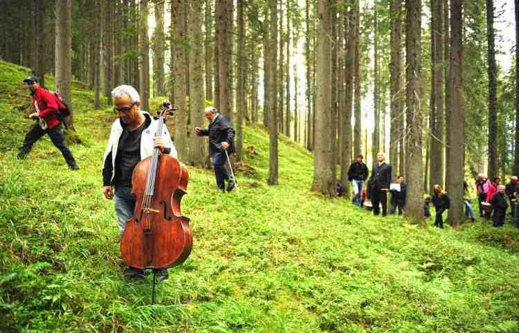 musicisti nel bosco che suona durante l'evento i suoni delle dolomiti in val di fiemme trentino alto adige