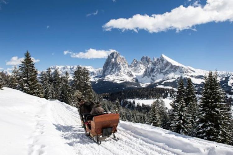 un calesse sulla neve della val gardena