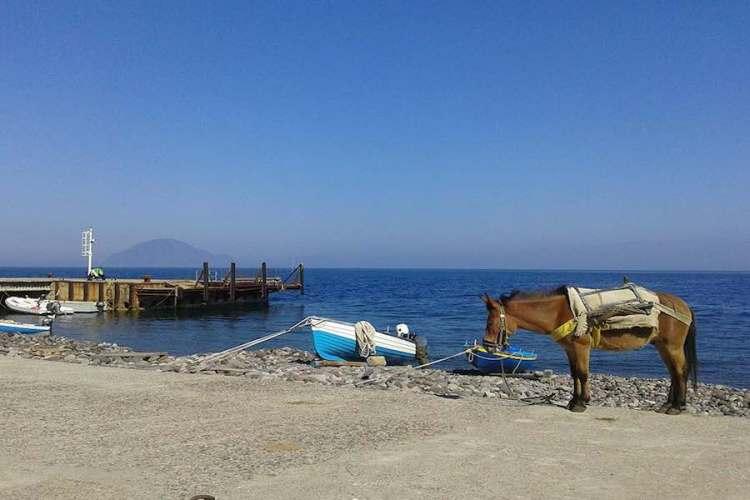un mulo al porto di alicudi arcipelago eolie