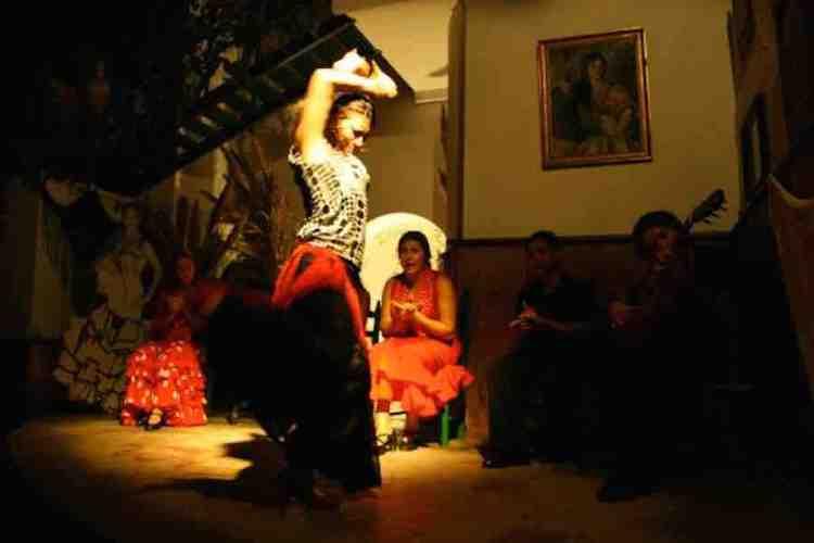 esibizione di flamenco alla taberna flamenca di jerez de la frontera andalucía spagna