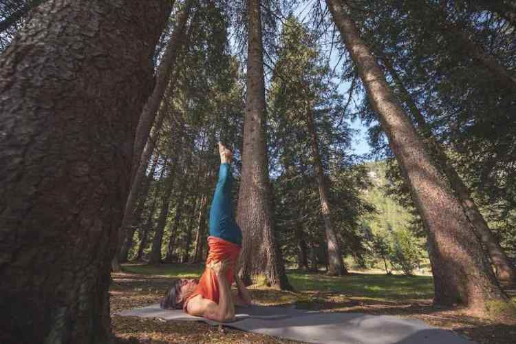 madonna di campiglio natural wellness