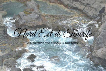 Nord Est di Tenerife