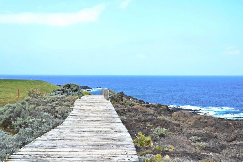 Panorama Punta De Las Vinas