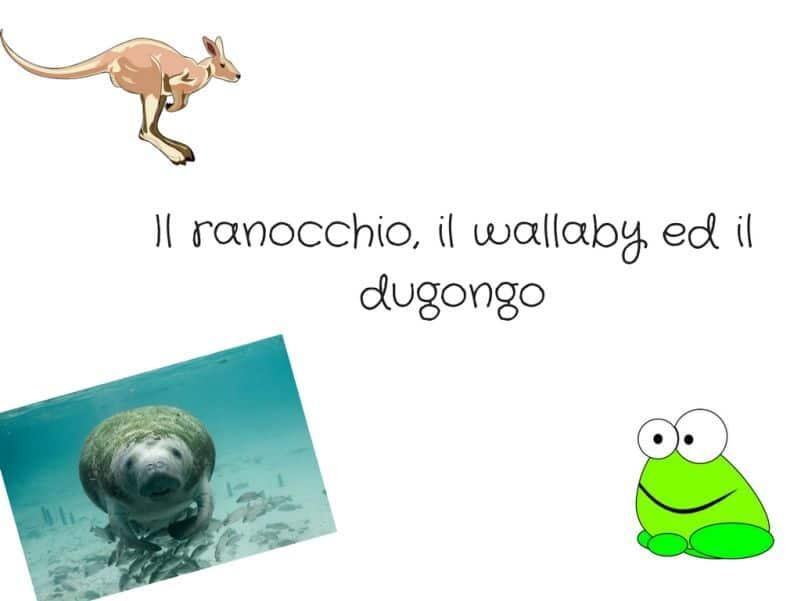 Il ranocchio il wallaby ed il dugongo
