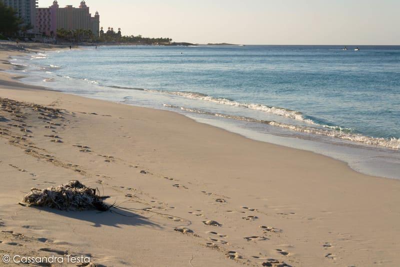 Cabbage Beach, Paradise Island