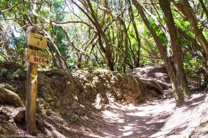 Sentiero de los Sentidos, Tenerife
